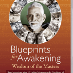 blueprints for awakening, film blueprints for awakening, dvd blueprints for awakening, spiritual master, indian master